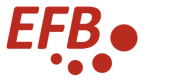 EFB Banner
